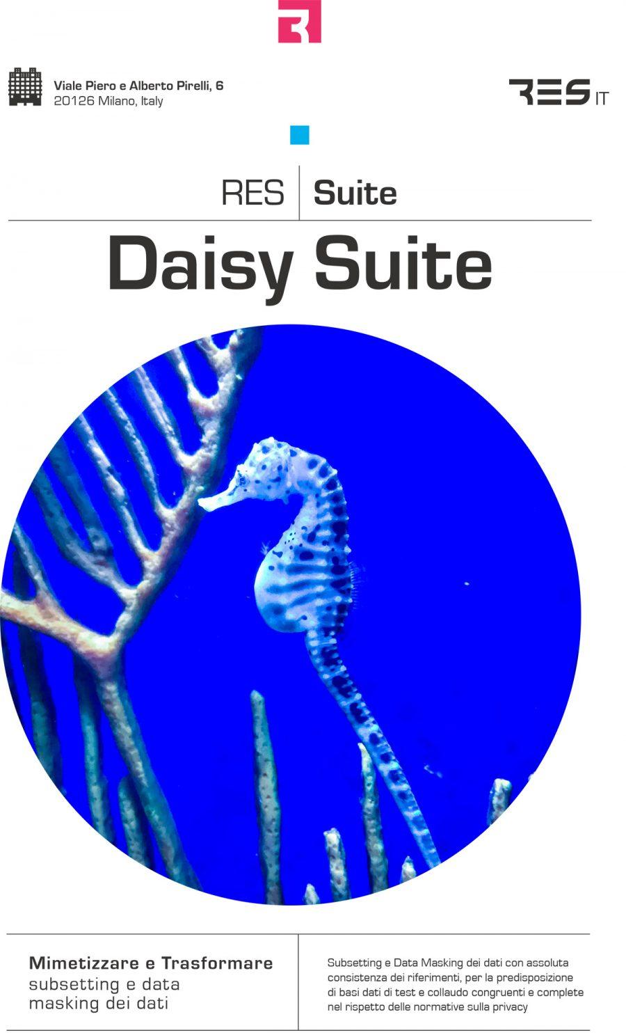 Daisy Suite